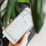 Top 5 Instagram Insights